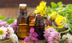 aromatherapy 250x150 - Home Page
